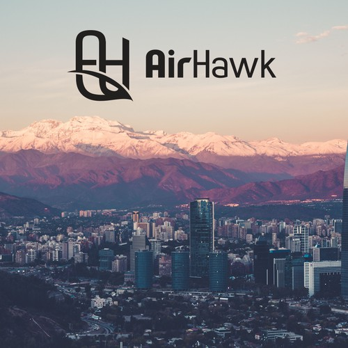 AirHawk aerial photography logo design