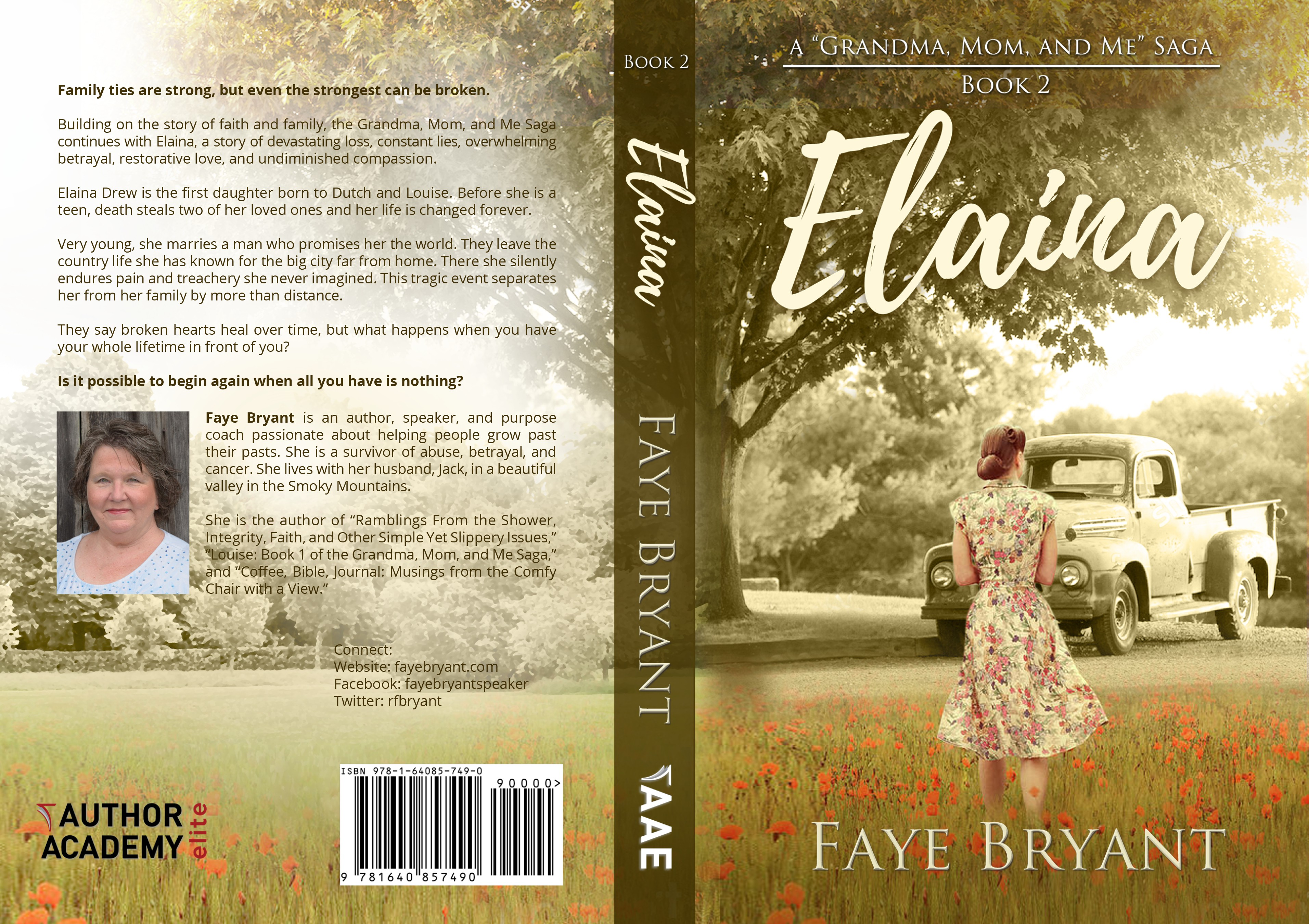 Make my novel come alive with a stunning book cover, potential for follow-up paid projects