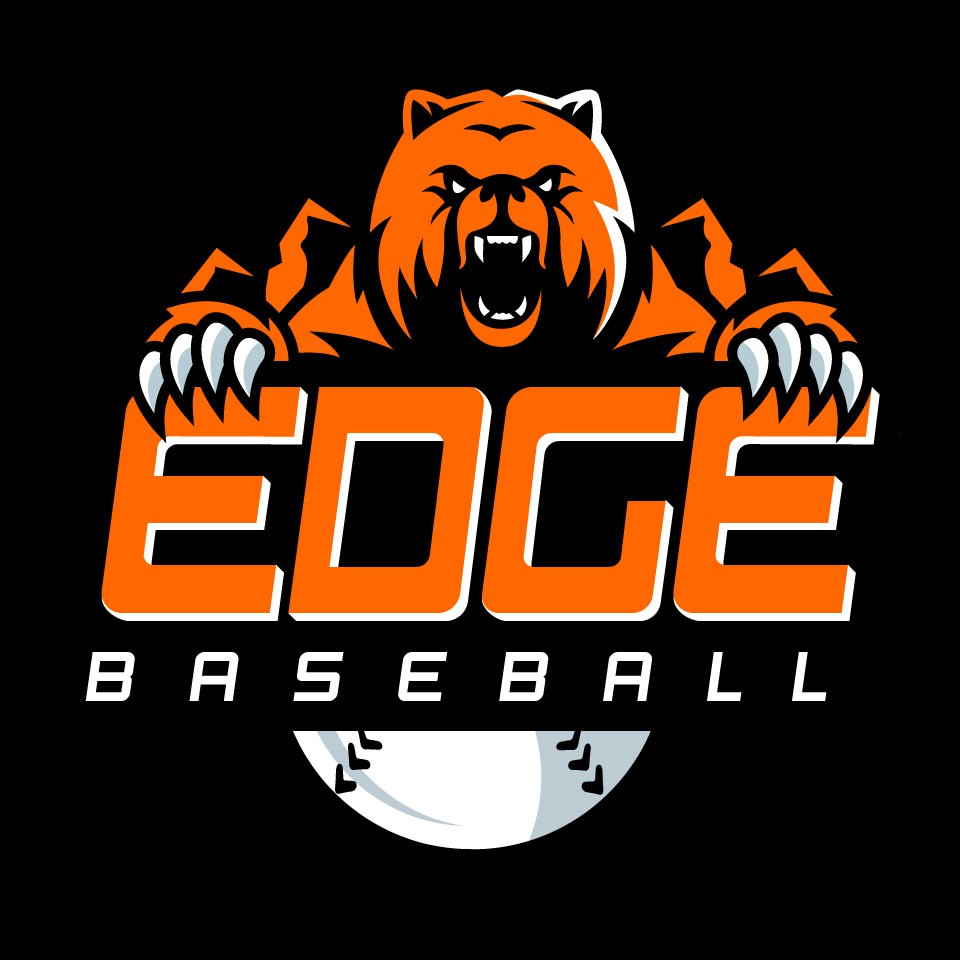 Youth Baseball Academy Needs Mascot Logo