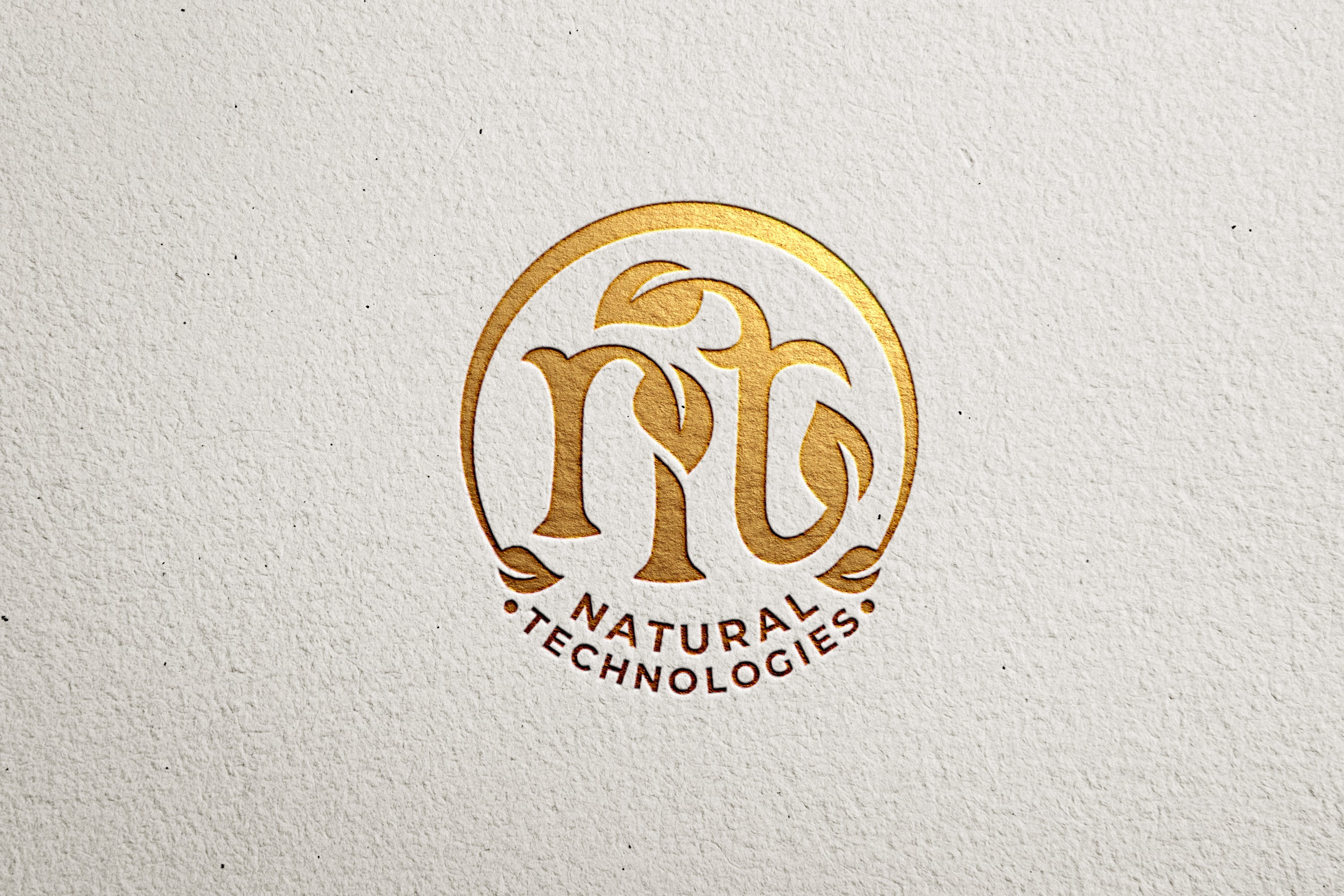 Logo for a new family owned company for Vinegar (fruit, wine and balsamic) and Mustard production.