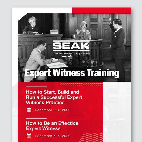 Expert Witness Training Flyer