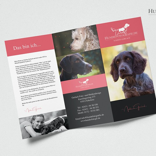Dog photographer brochure