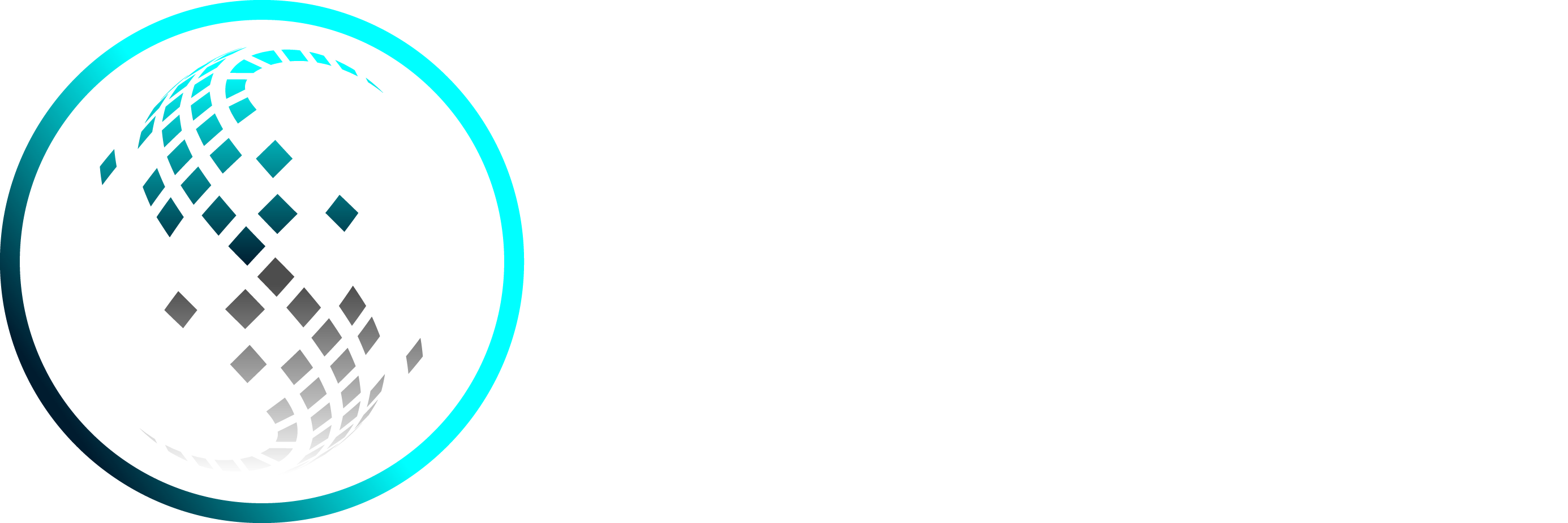 Create an awesome tech Logo for Scry Security