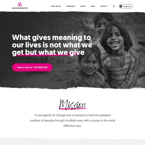 Website home page