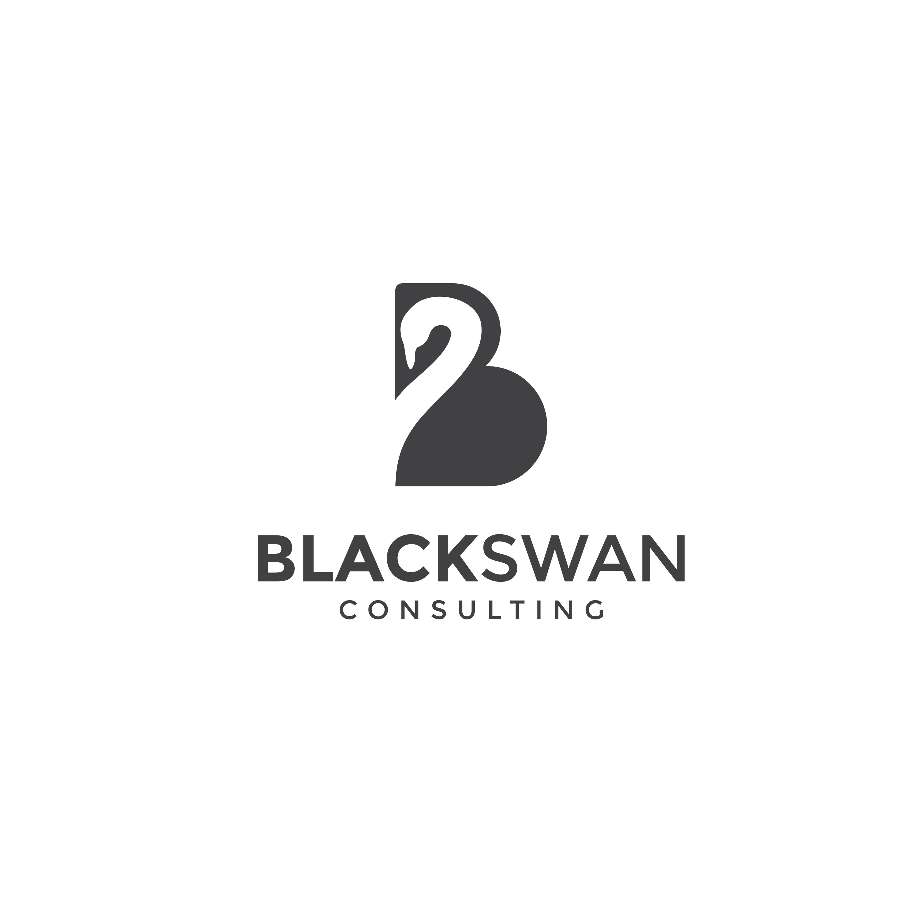 BlackSwan Consulting - Logo for a IT company