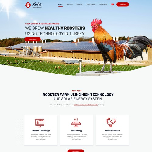 Creative website for agriculture company