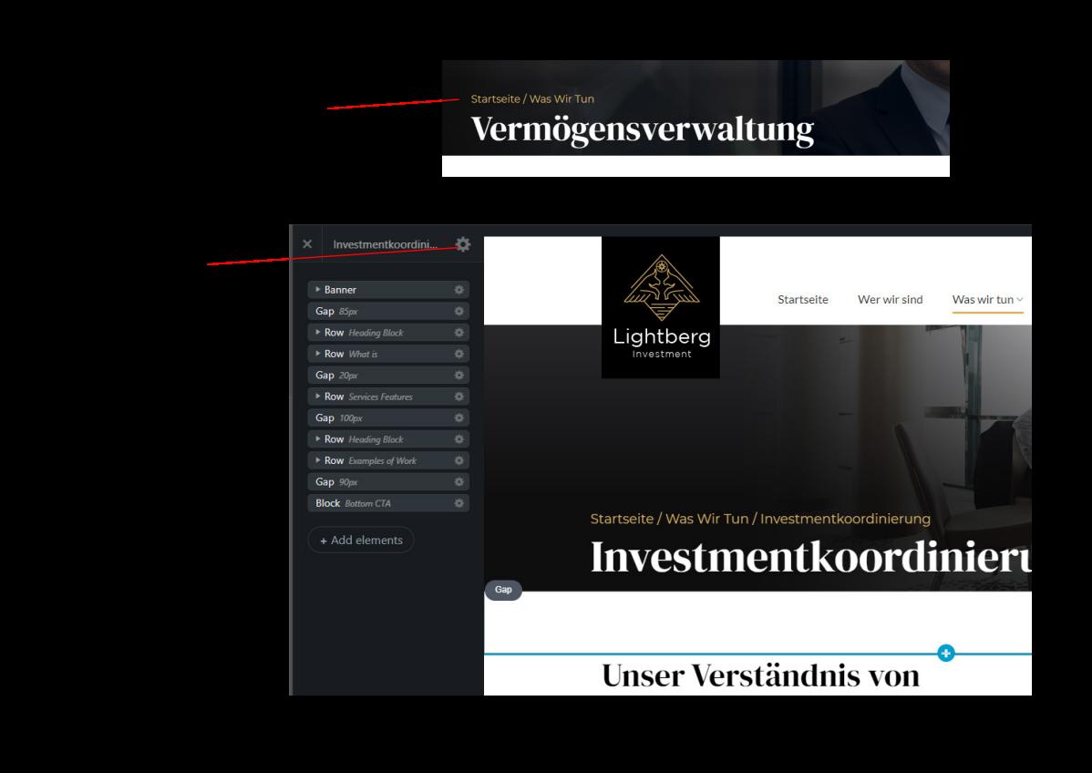 Website und Logo