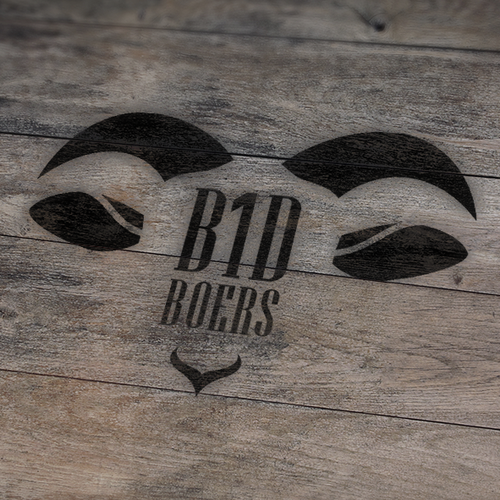 Logo concept for B1D boers