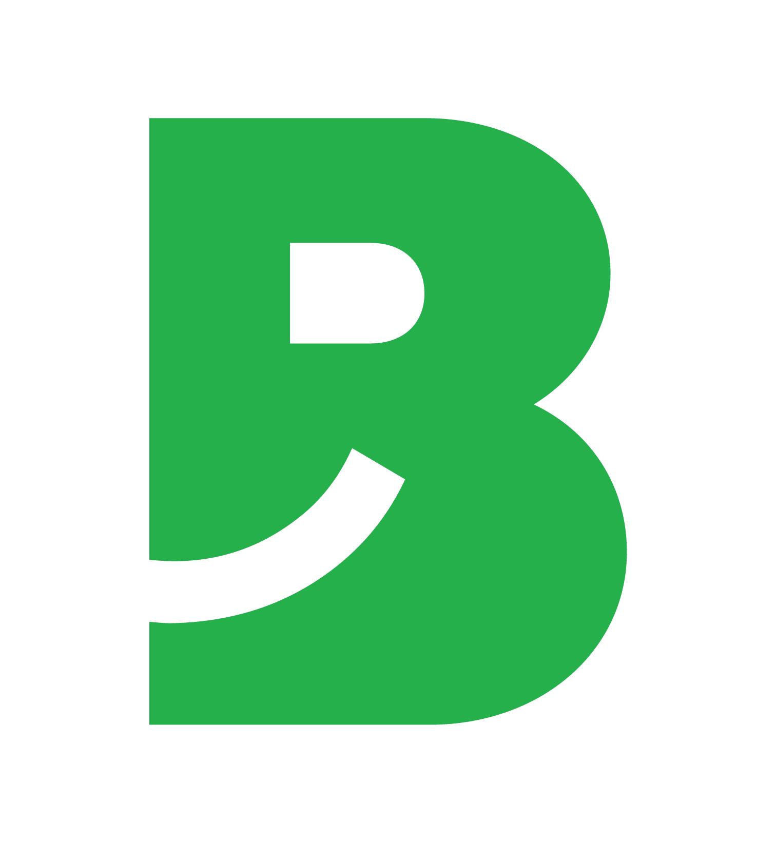 BizzPing Logo - Great Customer Satisfaction Made Simple