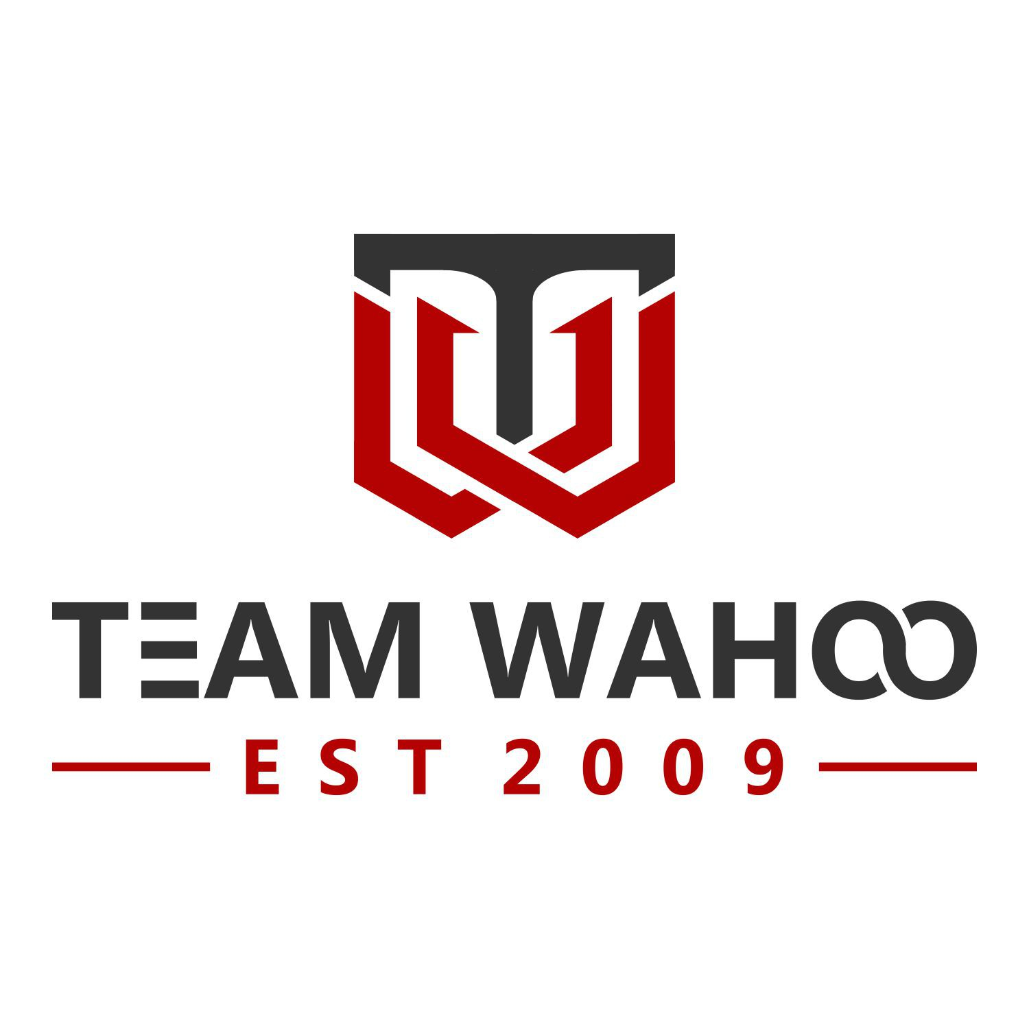 We need a powerful design with a timeless logo for our adventure racing team. Make people say WAHOO