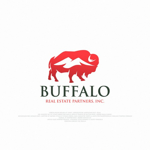 Buffalo Real Estate Partners