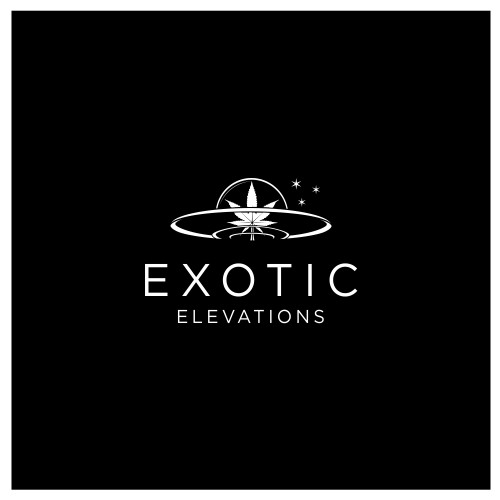Logo concept for Exotic Elevations