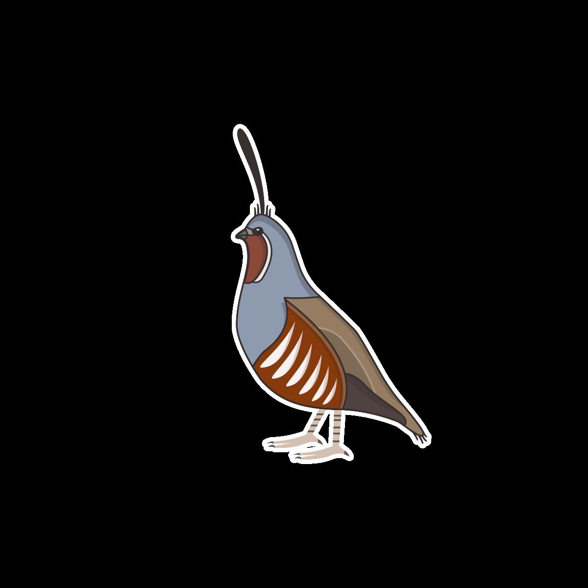 quail die cut stickers