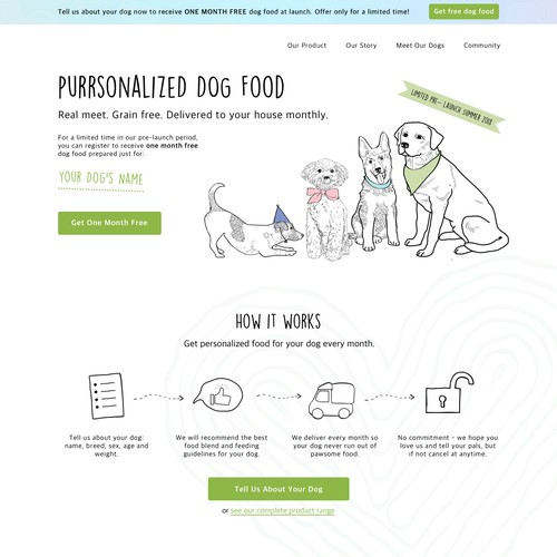 Website for a Dog Food Business