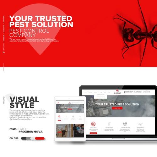 Website design for Expest company.