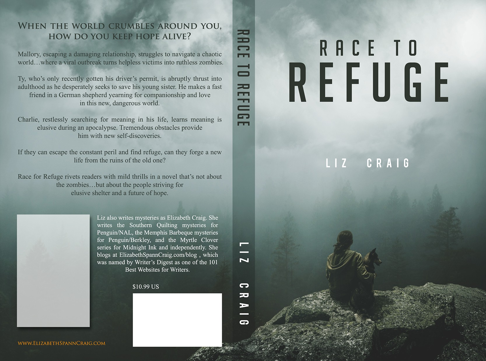 Ebook and Print Covers for Non-Gory Zombie Book