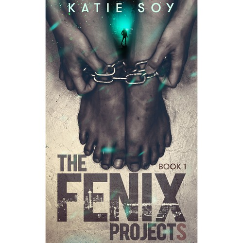 The Fenix Projects.