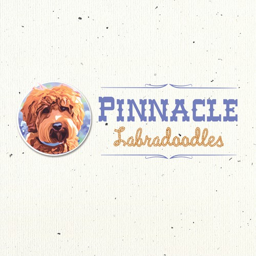 Pinnacle Labradoodles Logo in Texas.