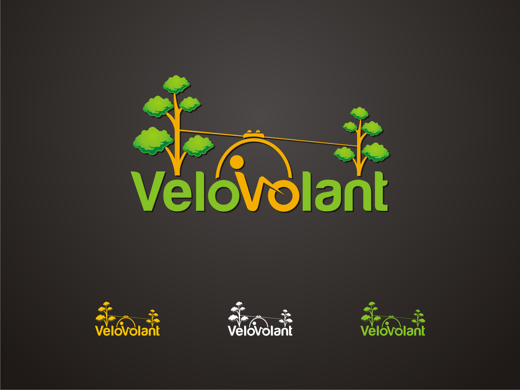 Help VeloVolant with a new logo
