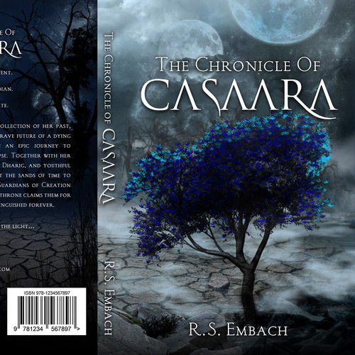 R. S. Embach needs a book cover for debut novel