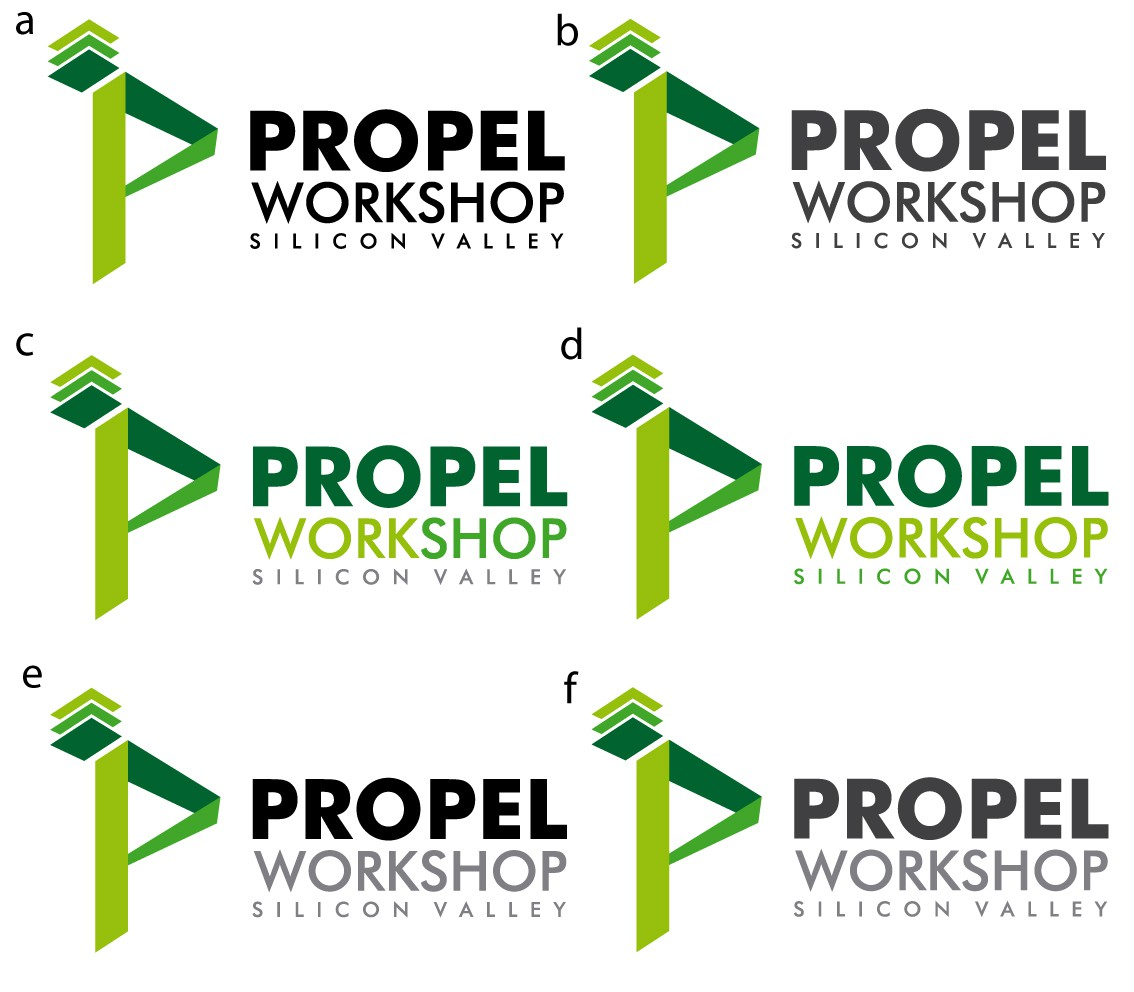 Propel Silicon Valley Workshop Logo