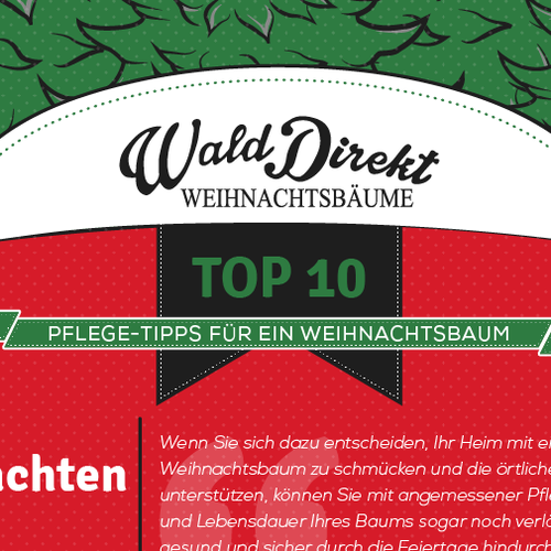 '10 Top Christmas Tree Care Tips' Infographic