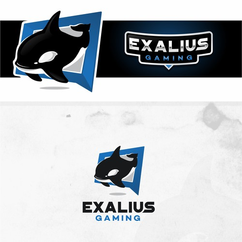 Exalius Gaming is a streaming channel that focuses on top tier gaming
