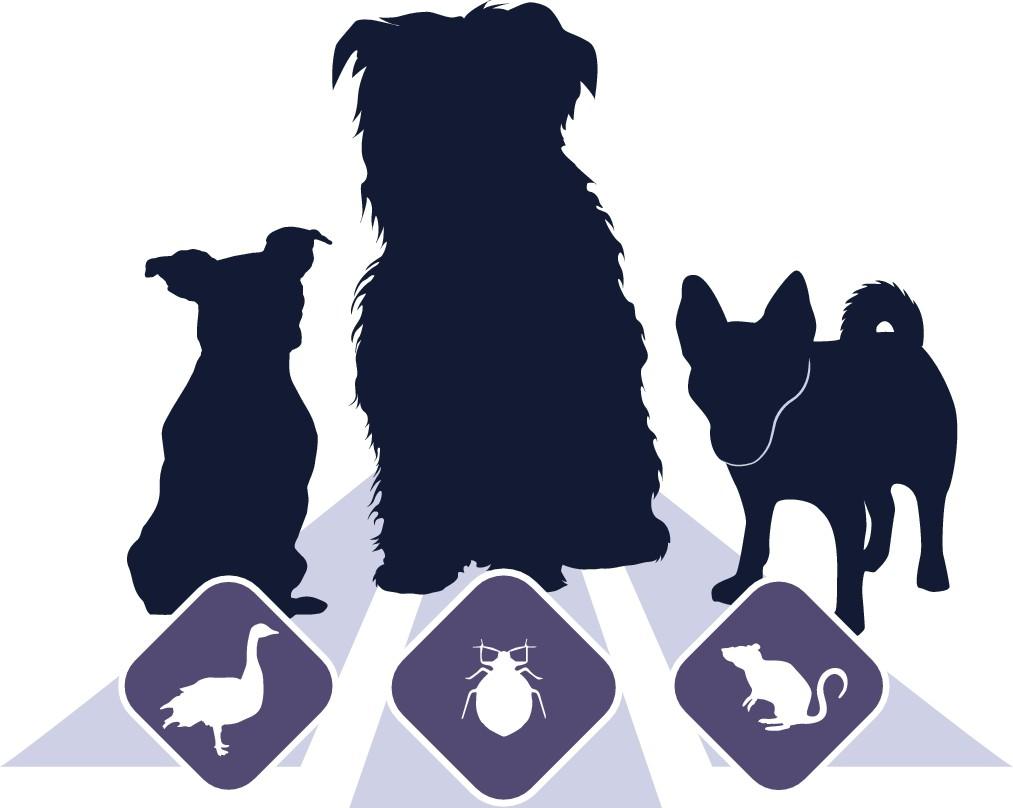 Dog Focused Logo for Pest Control Business