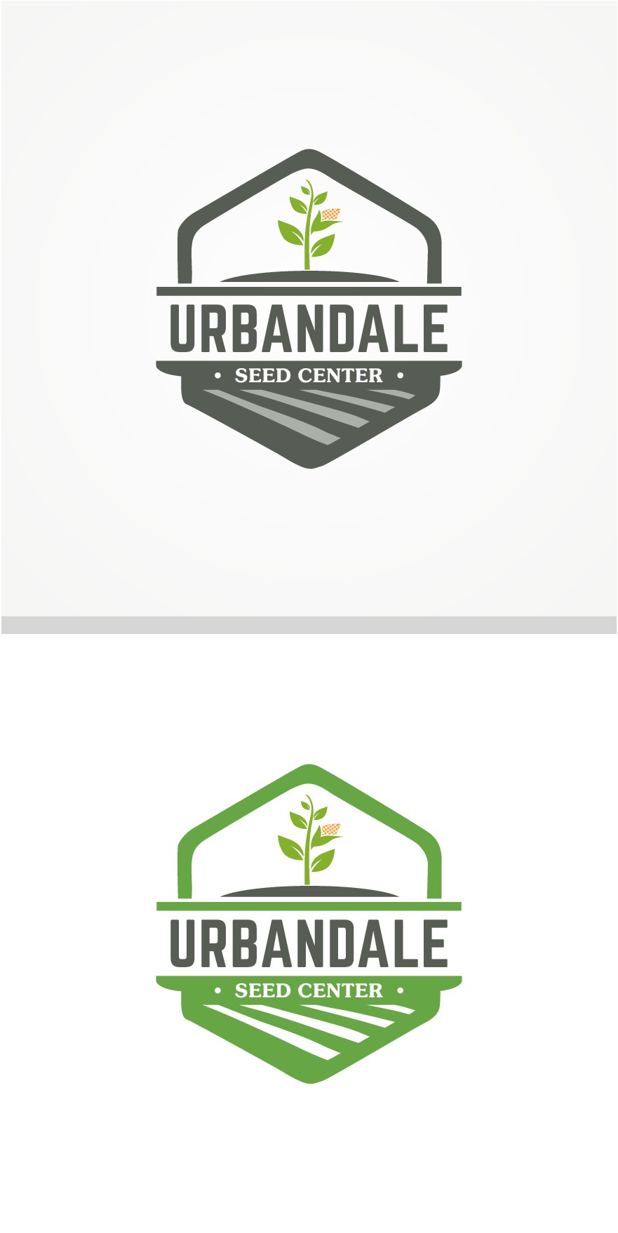 Seed Company - Agricultural