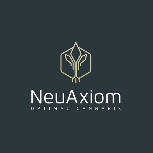 NeuAxiom logo