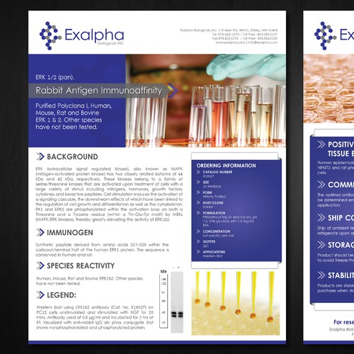 Exalpha sell sheet template