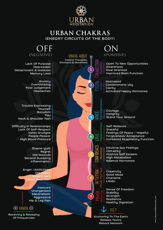 Branded Chart for multi location meditation studio