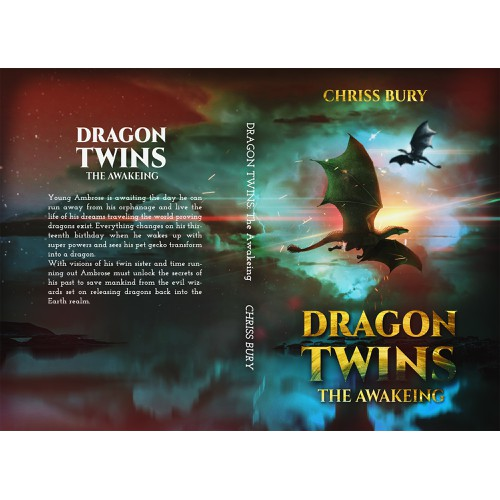 Book cover: DRAGON TWINS