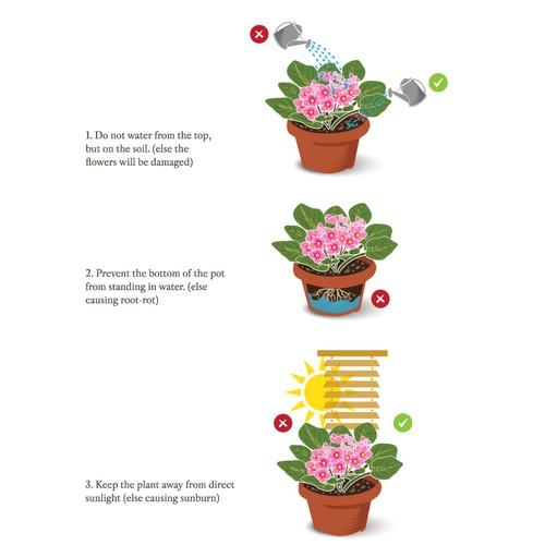 Plant care illustration