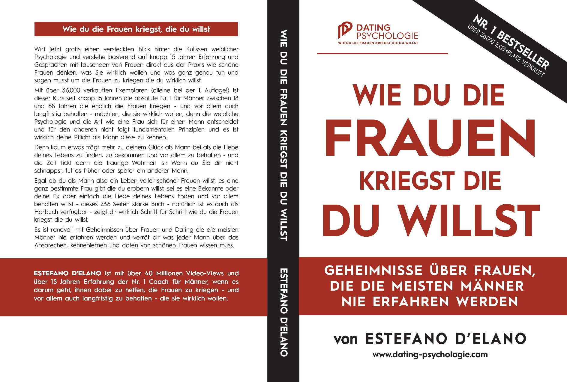 Nr. 1 Dating Advice Book Cover German Market - LONG TERM Projects!