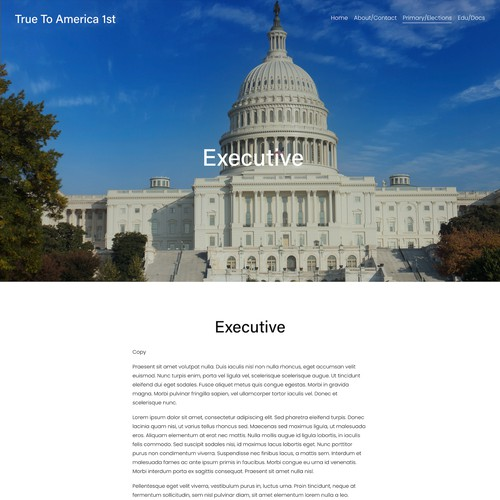 Informative Government Design for Organization