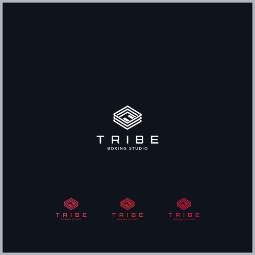 Logo Concept for Tribe Boxing Studio