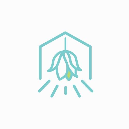 Clever logo for interior designer
