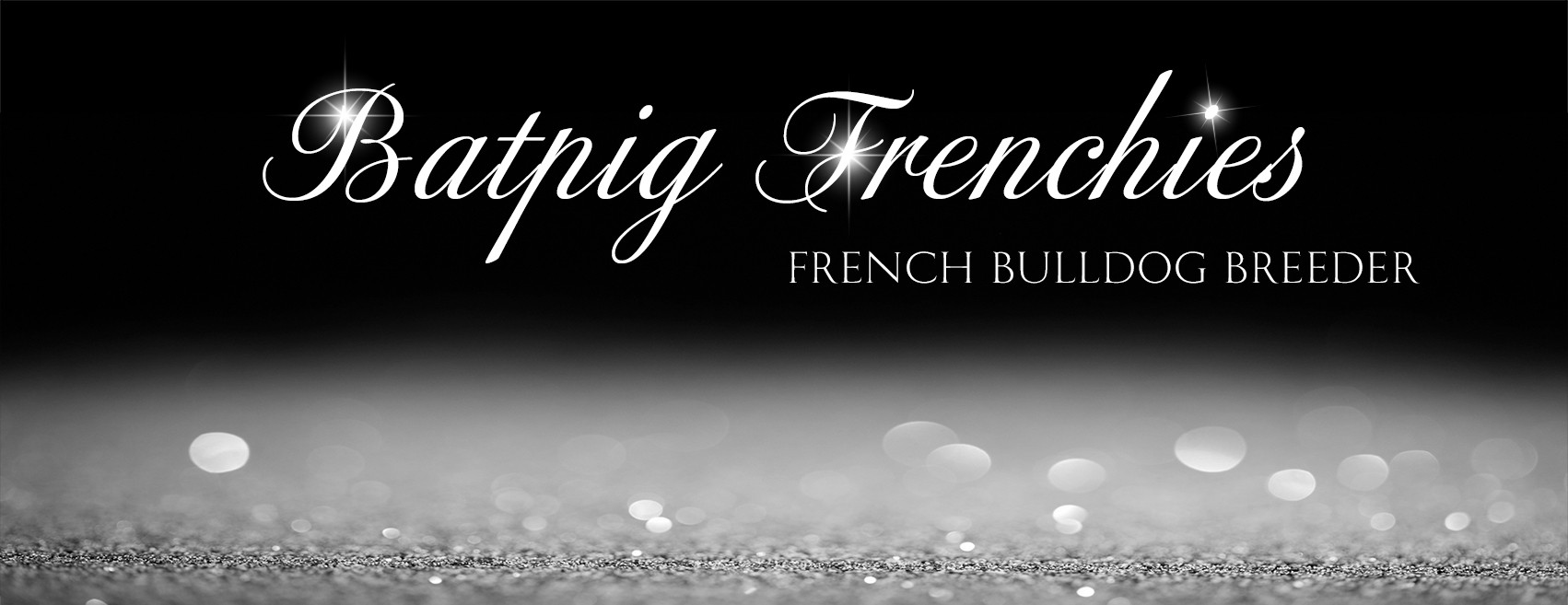 BatPig Frenchies is a breeder looking for dramatic and sparkly design for the Facebook page