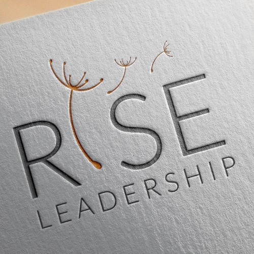 Entry  for Rise Leadership