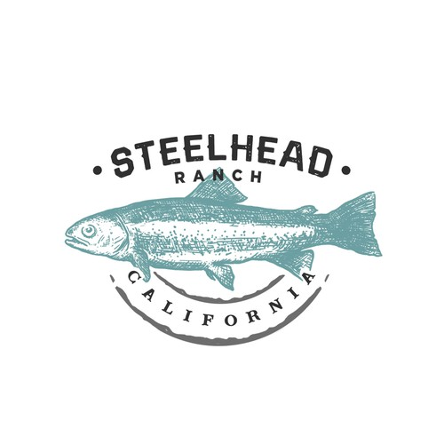 "Logo proposal for ""Steelhead Ranch"""