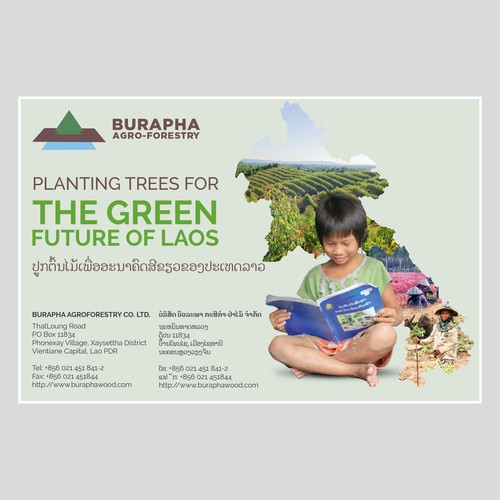 Design a print ad for a sustainabl forestry company