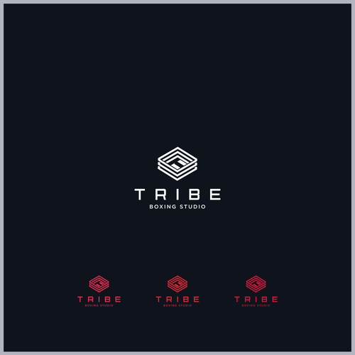 Logo Concept for Tribe Boxing Studio