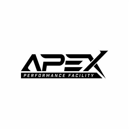 We need a strong and powerful logo for APEX Performance
