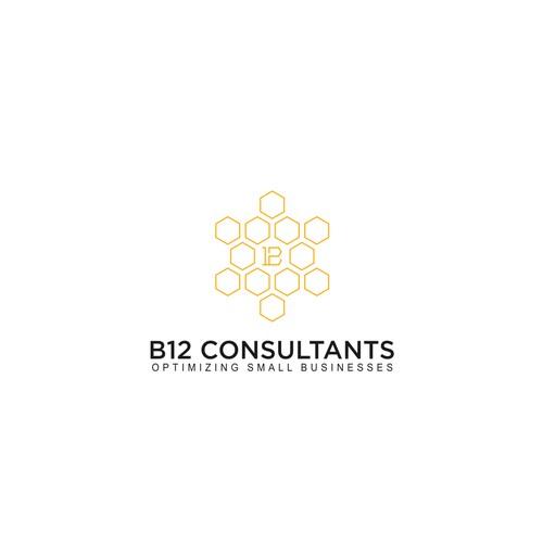 B12 CONSULTANTS