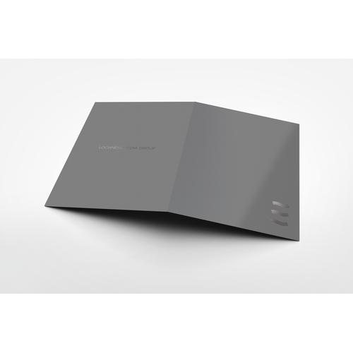 Folder Design for Lochness Media Group