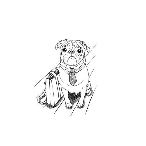 Dog Clothing Illustration