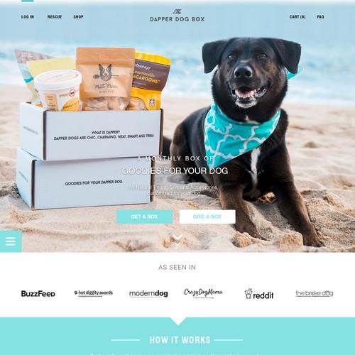 Web Design Concept for The Dapper Dog Box
