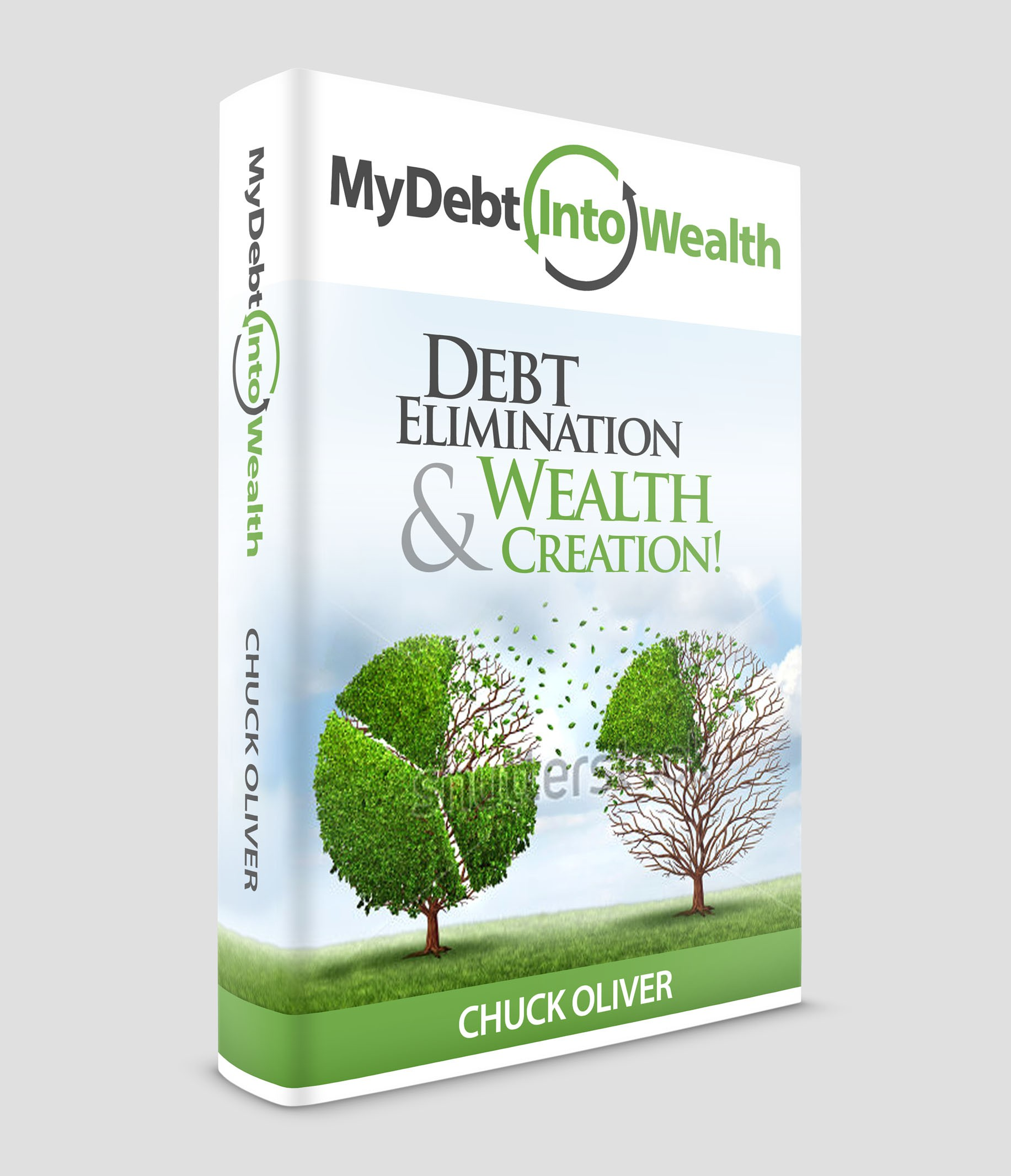 MY DEBT INTO WEALTH, Debt Elimination & Wealth Creation!