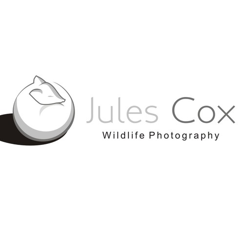 Create a beautiful logo for a professional wildlife photographer